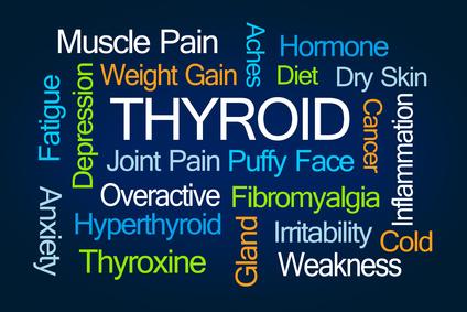 Hashimoto's Thyroiditis