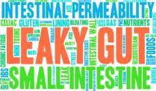 "How to check for ""leaky gut"" syndrome"
